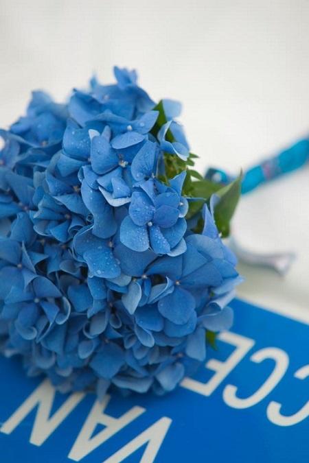 수국 부케 수국은 웨딩부케에 자주 쓰이는 꽃이다. 배우 심은하가 선택한 뒤로 인기가 높아졌다. 진한 색감은 촬영할 때 잘 어울린다.