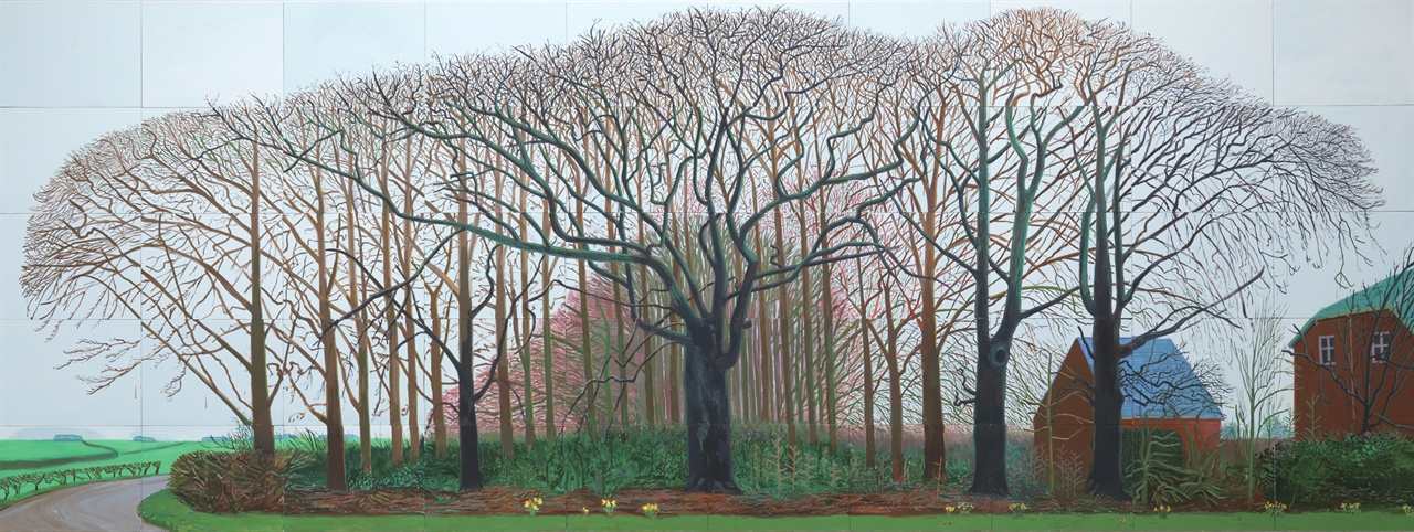 """<와터 근처의 더 큰 나무들>(2007) """"나무는 원근법을 따르지 않습니다. 또는 따르는 것처럼 보이지 않습니다. 나무는 수많은 방향으로 뻗어가는 선들로 매우 복잡하기 때문입니다."""" '외눈박이의 눈'이 아닌 인간의 눈으로 바라보는 세상을 묘사하고자했던 호크니에게 나무는 매우 흥미로운 소재임에 틀림없었다."""