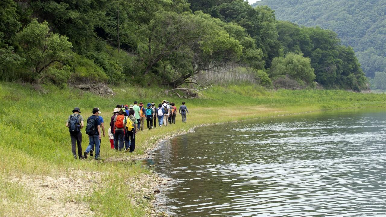 금강 하천길 트레킹하는 모습 공주보 수문개방 후 수위가 낮아지면서 나타난 하천길을 걷고 있는 금강 트레킹 참가자