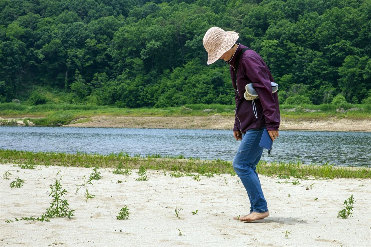 금강 공주보 직상류 모래밭 공주보 수문개방으로 나타나고 있는 모래밭을 맨발로 걸으며 햇빛과 모래의 온기를 느끼며 힐링의 시간을 보내고 있다.