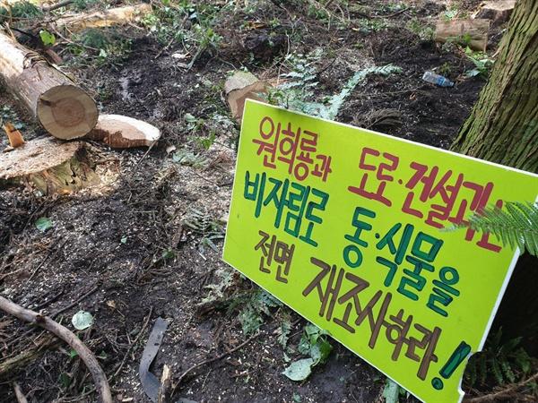 비자림로동식물전면재조사하라는 시민들 피켓 .