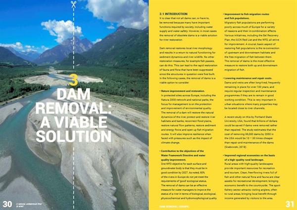 '댐 제거, 우리 유럽 강의 미래를 위한 시행 가능한 해결책' 보고서