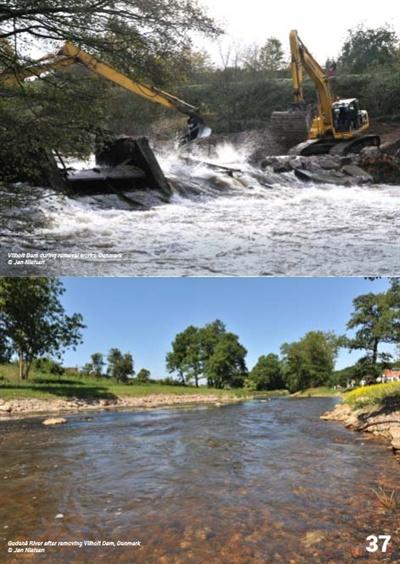 '유럽 댐 제거'(Dam Removal Europe) 사이트에 게재된 보고서.
