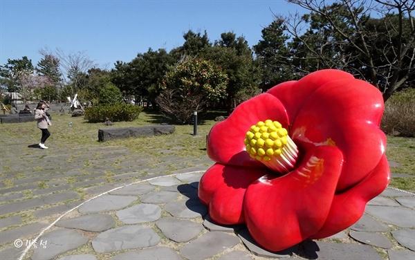 제주의 상징 동백꽃