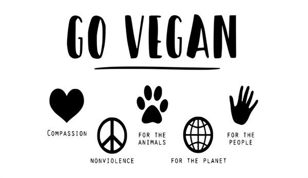 페미니스트로서 채식을 한다는 것은 내가 살고 있는 세계에서 일어나고 있는 또 다른 폭력을 외면하지 않겠다는 또 한 번의 선언이다.