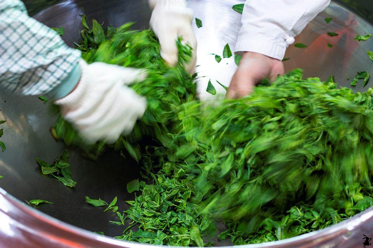 찻잎의 살청 과정인 덖기 녹차잎을 주인장은 뜨거운 솥에서 맨손으로 가볍게 녹차들을 굴리는 덖기를 한다. 이 과정은 '살청'으로 효소의 촉진작용을 억제하는 과정이다.