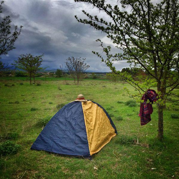 개떼들 사이에서 생존한 텐트 뒤로 올림푸스로도 불리는 파이코Paiko 산이 구름에 가려 있다.