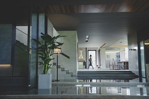 기생충 영화의 주 무대인 박 사장 집에선 유독 계단이 의미심장하게 강조되는 형태다.