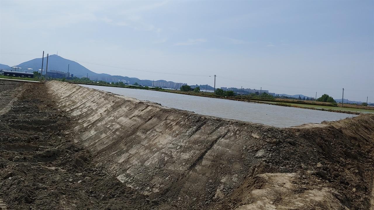 성토 공사를 마친 대장동 들판의 논 주변의 논들보다 한층 높이가 높아졌다.멀리 보이는 산은 부평 계양산이다.