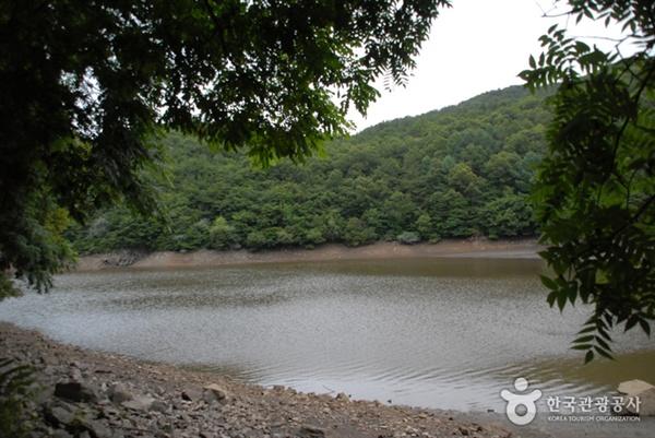 대전 동구 세천.