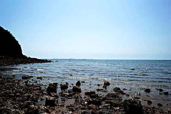 환상의 길 아래에서 바라본 해안 풍경