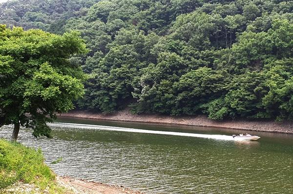 장성호를 가르는 보트. 잔잔한 호수를 가르며 시원함을 선사한다.