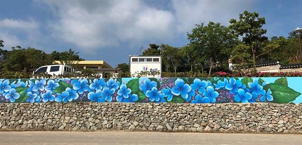 '제1회 섬 수국 축제'가 열리는 전남 신안군 도초도 수국공원 옆에 있는 옛 도초서초등학교 담벼락에 수국 벽화가 그려져 화제다.