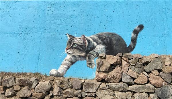 마치 살이있는 고양이처럼 마을벽화는 생생하다.