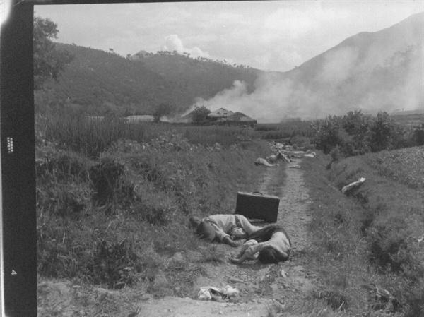 1950. 8. 25. 전투기의 기총소사로 들길에 나뒹굴고 있는 피란 시신들.