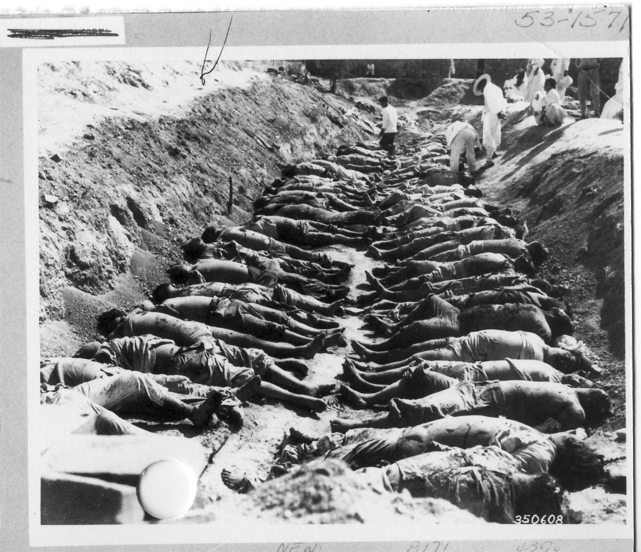1950. 10. 진주, 학살 현장으로 시신들을 굴비 엮듯이 뉘어 놓았다.