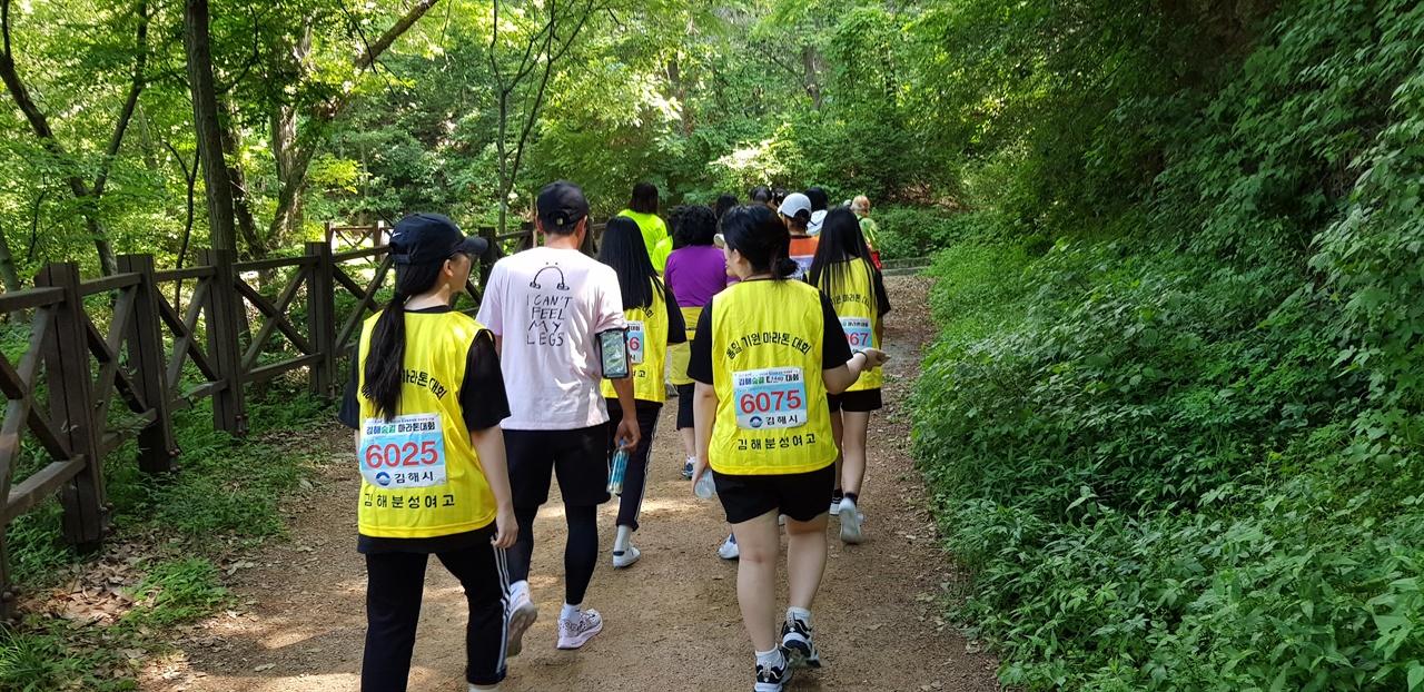 숲길을 따라 마라톤 중인 학생들 5Km 구간 완주를 위해 뛰다 건다 반복하는 학생들