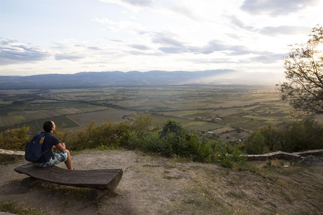 알라자니 대평원     조지아 최대 와인 산지인 카헤티 알라자니 밸리