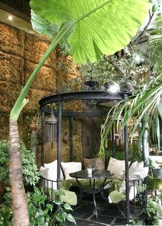 알로카시아 오도라 식물 카페에서 처음 만났던 알로카시아 오도라. 단순하면서 멋스러웠다.10여년 전만 해도 이런 모양의 식물이 없어서 신선했다. 이 모습에 반해 알로카시아를 키우기로 결심했다.