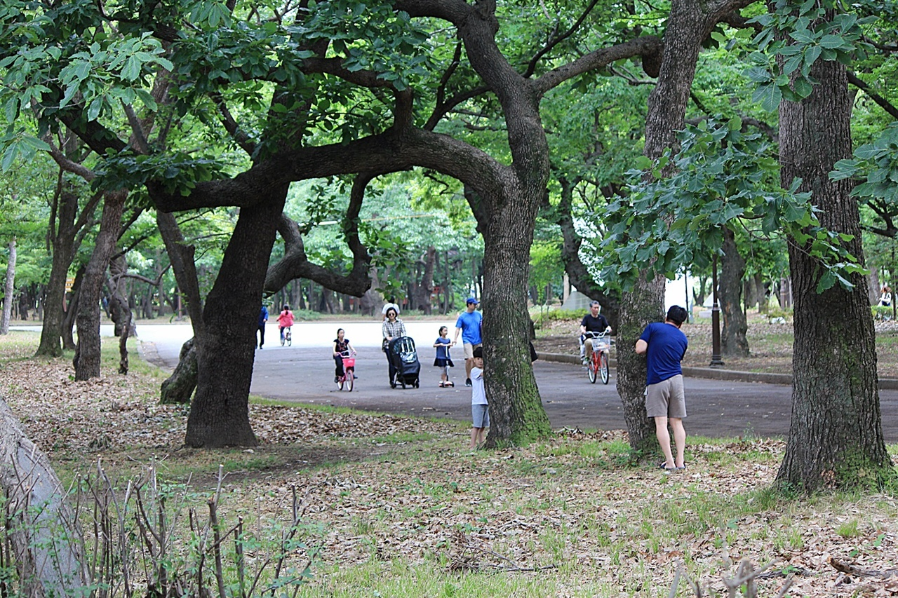 도심 속 센트럴파크로 유명한 경주 황성공원 모습, 아이들과 시원한 그늘막 아래에서 숨바꼭질하는 모습이 정겨워 보인다.