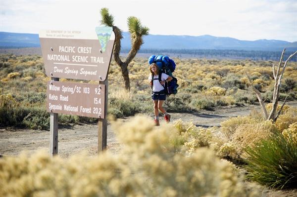 어린 나이에 모든 걸 잃은 것과 마찬가지인 셰릴이 장장 4300km의 퍼시픽 크레스트 트레일(PCT)를 완하려 한다. 그 끝엔 무엇이 있으며 무엇을 얻을 수 있을까.