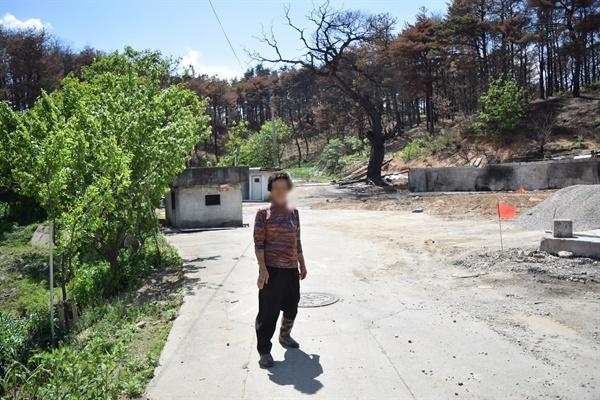 용촌리 집터 앞의 변(76, 여)씨 할머니. 불에 탄 100년 넘은 밤나무가 할머니 뒤로 보인다.