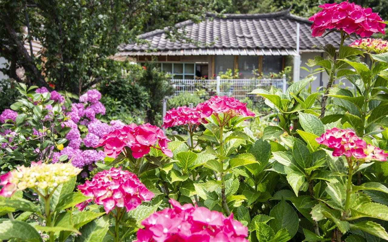 연도의 화원 연도에서 제일 꽃이 많은 집이 있다. 집 곳곳이 꽃의 별천지지만 이곳의 꽃은 다른 집보다 10배는 많다.