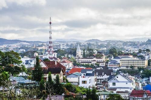 365일 봄의 도시, 베트남 달랏