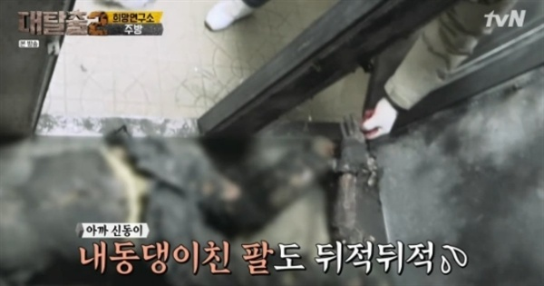 불에 탄 시신 등을 방송한 지난 4월 28일 tvN <대탈출2> 방송분에 대해 방송통신위원회가 법정 제재인 '주의' 결정을 내렸다.