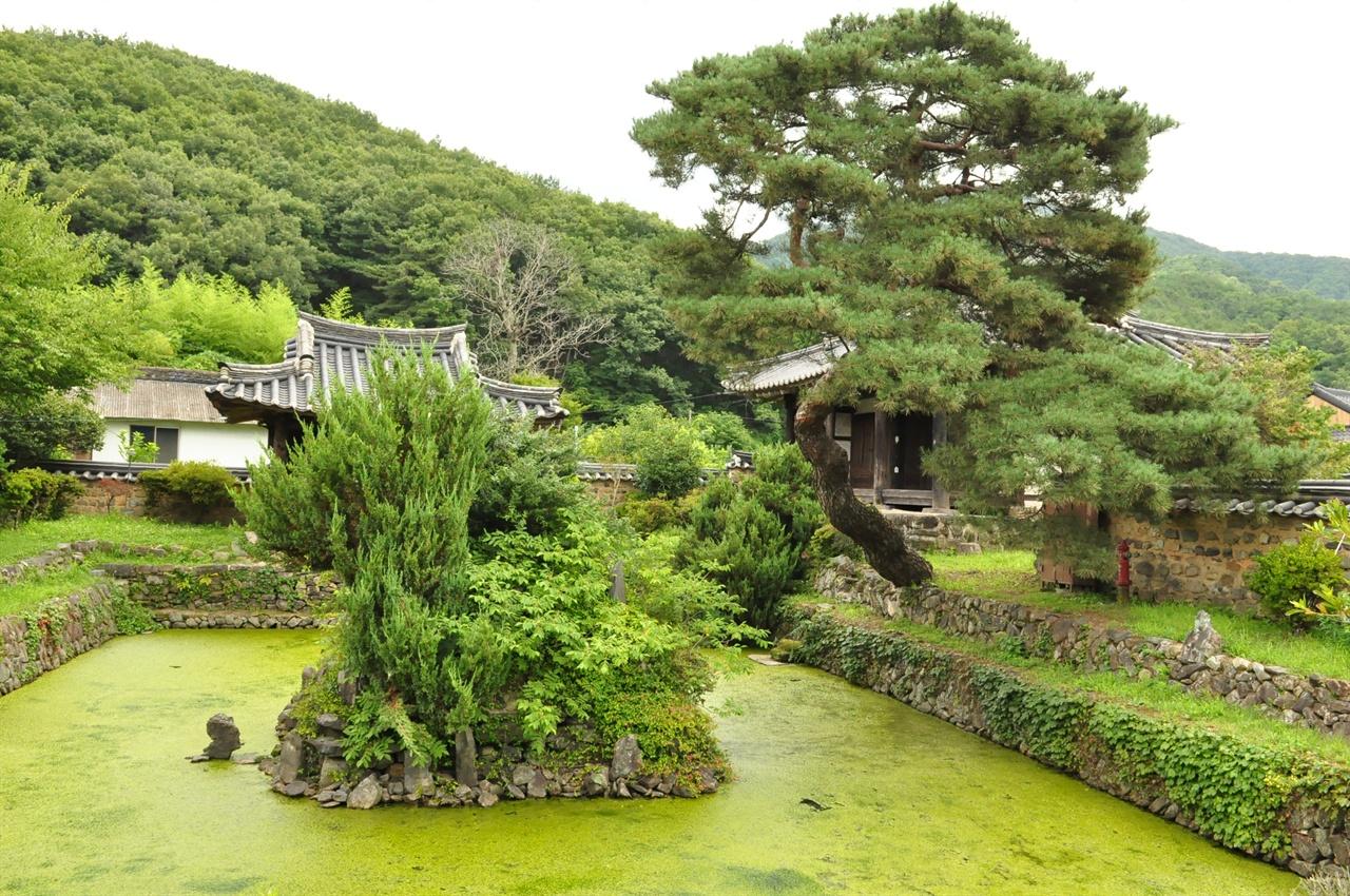 무기연당의 모습. 연못가 소나무의 휘어짐이 마치 고개숙여 경의를 표하는 것 같다.