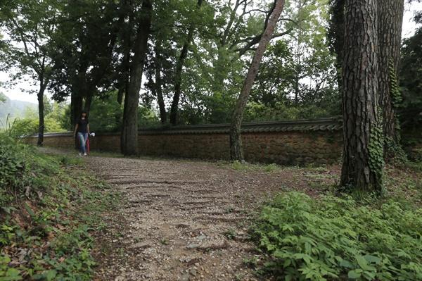 녹우당 주변 산책길. 고산 윤선도와 공재 윤두서의 흔적이 배어있는 곳이다.