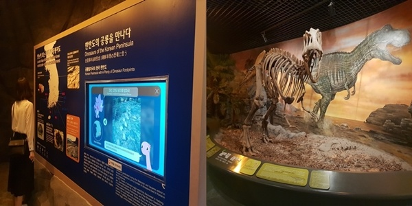 고성 엑스포 전시관 고성 엑스포 전시관에는 다양한 공룡 화석과 모형이 전시되어 있다.