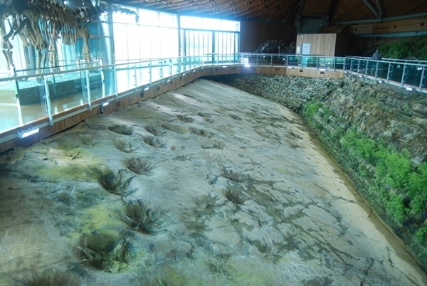 해남 공룡발자국 화석 별달린 공룡발자국 화석은 해남 우항리에서 발견된 것이 세계에서 유일하다.