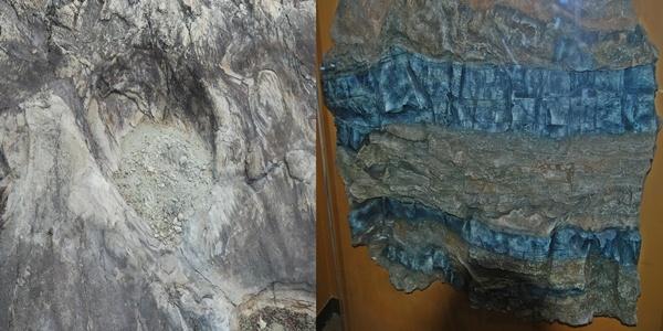 우항리 화석산지에서 발견된 화석 좌(해남 우항리 화석산지에서 발견된 크기 1m에 달하는 공룡 발자국 화석), 우(세계에서 유일한 뜯어내림 역편)
