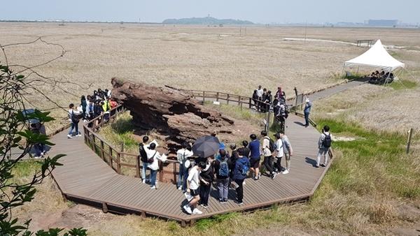화성 고정리 공룡알 화석산지 화성 고정리 공룡알 화석산지는 많은 학생들이 지질탐사를 위해 방문하는 대표적인 자연학습장이다.