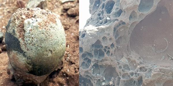 화성 고정리 공룡알 화석 좌(공룡알 화석), 우(공룡알 둥지화석)