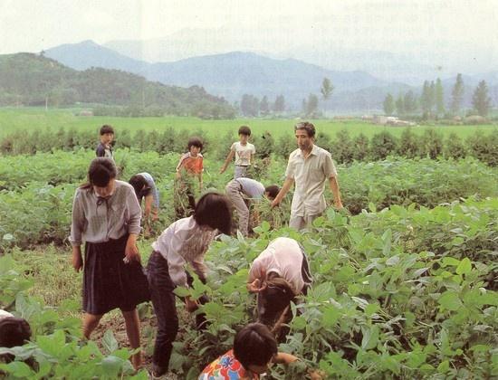 어른은 멧골학교에서 밭일을 아이들하고 함께하기를 즐겼다.