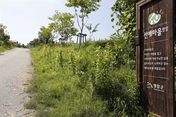 선애마을 입구에 세워져 있는 마을안내판. 지속가능한 마을을 꿈꾸며 생태공동체를 지향한다고 적혀 있다.