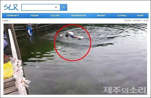 21일 오전 10시25분 한라산 사라오름 산정호수에서 한 산악인이 수영을 하는 모습. 이 장면을 촬영한 한 네티즌이 이 같은 행위를 질타하며 이날 오후 국내 커뮤티니 사이트에 사진을 게재했다. [사진출처-SLR클럽www.slrclub.com]