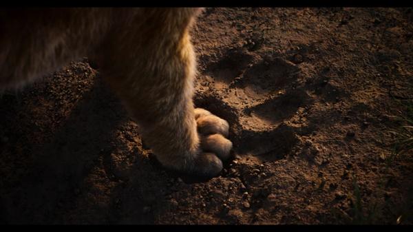 영화 <라이온 킹> 스틸컷 영화 <라이온 킹> 스틸컷