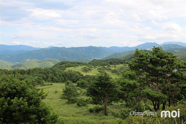 경주시 산내면 OK목장 바람(화랑)의 언덕 모습