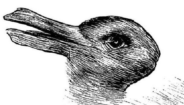 오리토끼, 비트겐슈타인  『철학적 탐구』의 삽화