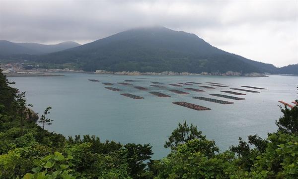 아부산 거북바위에서 내려다 본 소안도 풍경. 앞바다에 전복 양식장이 그림처럼 떠 있다.