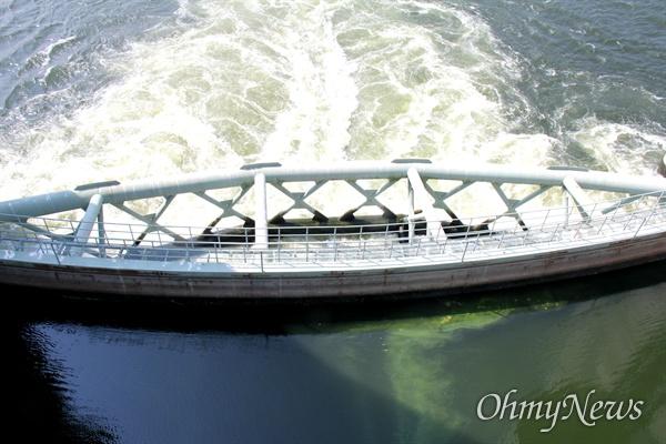8월 4일 낙동강 합천창녕보의 녹조. 이날 보 수문 1개가 개방되어 물이 흐르고 있었고, 상류의 녹조가 모여 흘러 내렸다.