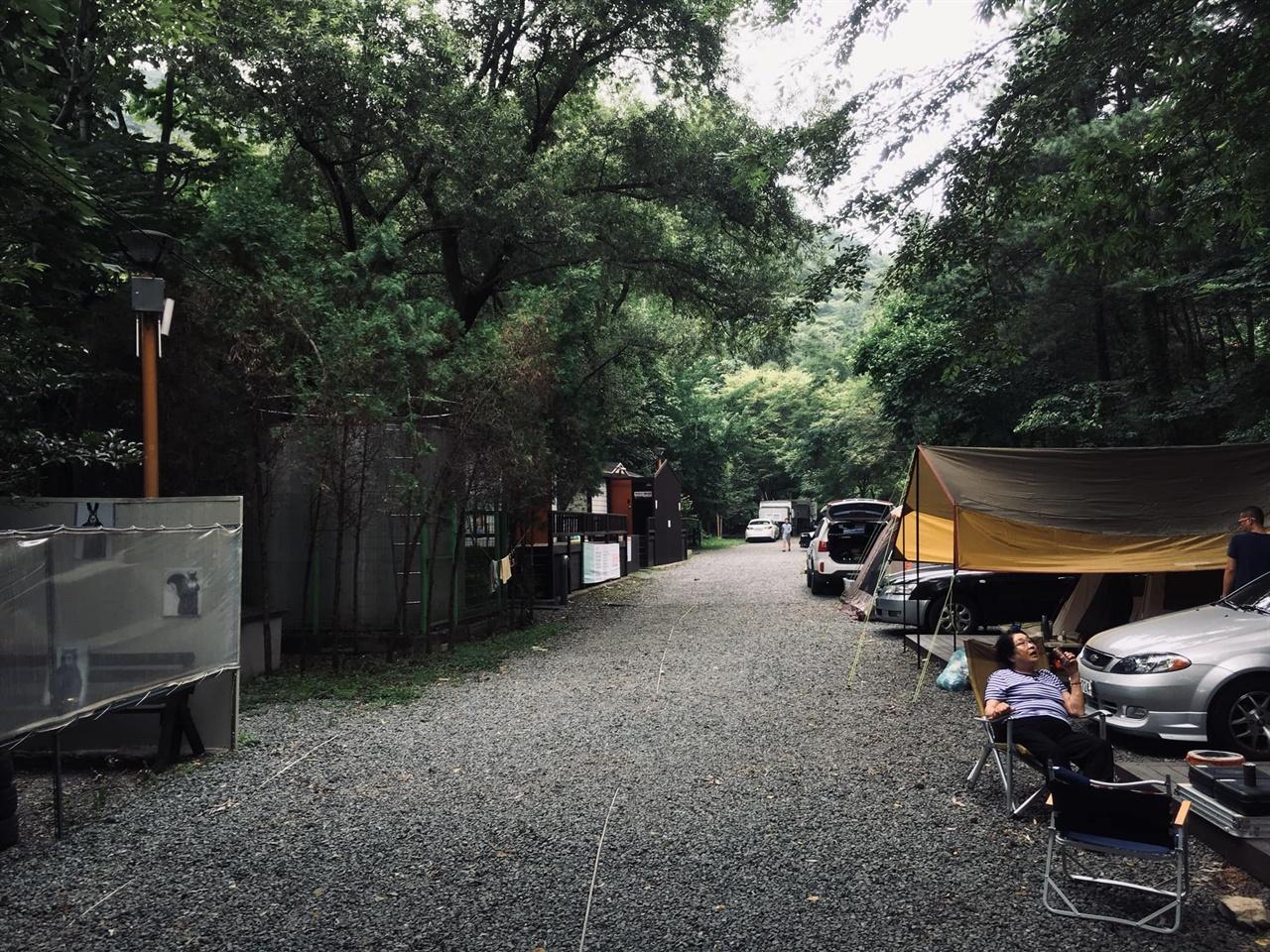 달천공원 캠핑장 휴가철이라 평일인데도 많은 사람들이 캠핑을 즐기고 있다