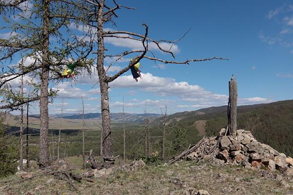 몽골 어디를 가나 볼 수 있는 오보 인근 낙엽송 가지에 하닥이 걸려있다.