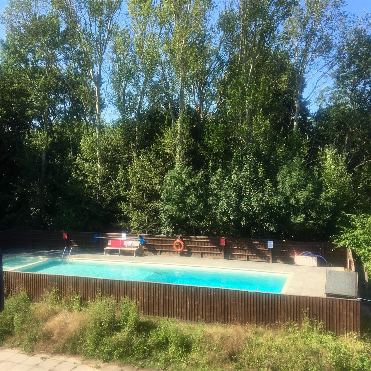 체험기간동안 방문자들이 수영장 규칙을 8개나 어겨서 긴급회의가 소집되었다.