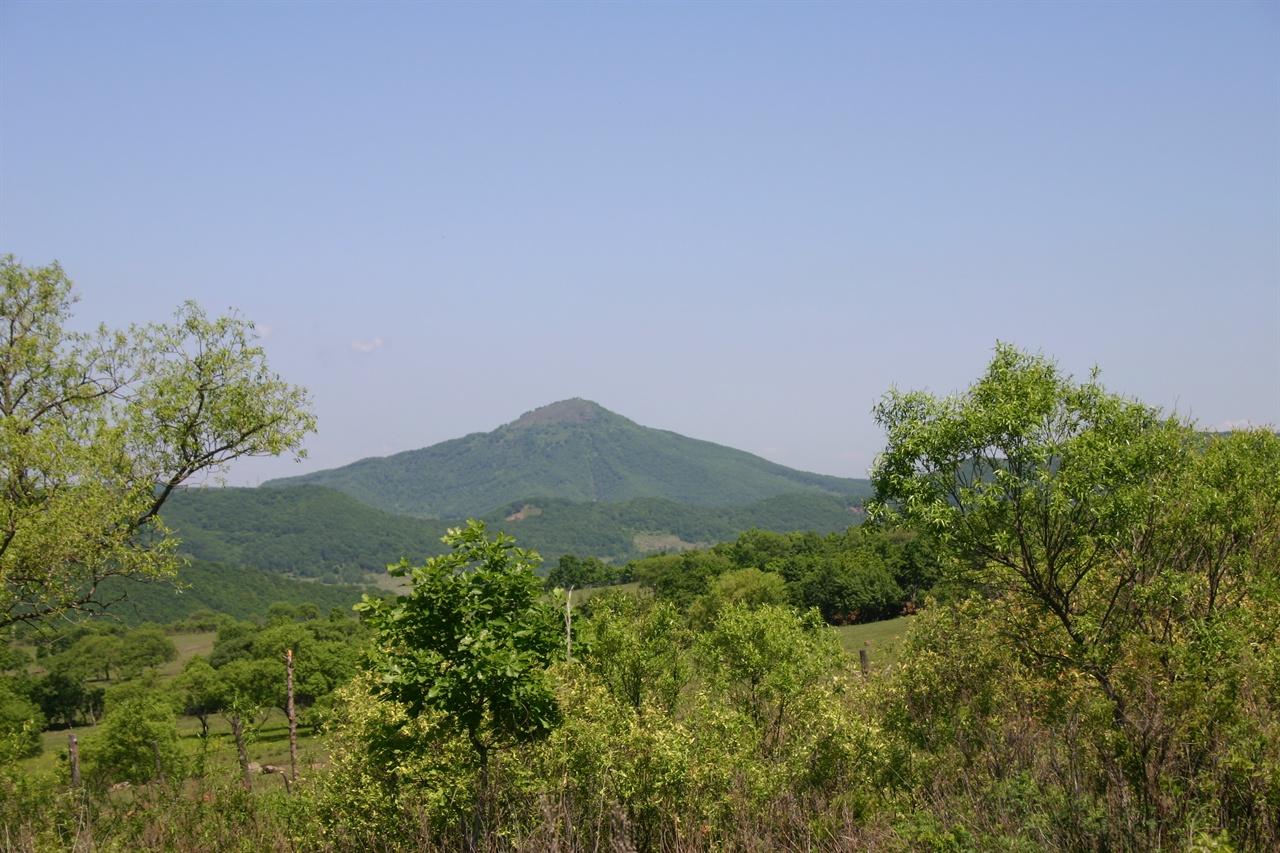 봉오동 전적지 일대를 껴안고 있는 초모정자산(2004년 제2차 답사 때 촬영).