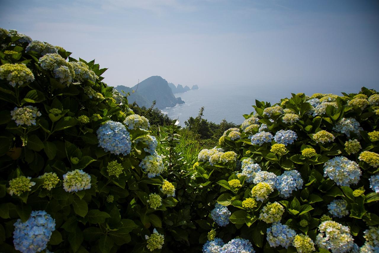 연화도  섬 이름에서 느껴지듯이 불교적 색채가 진하게 묻어나고 있다.