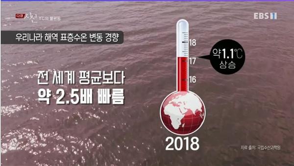 지난 7월 25일 방영된 EBS <다큐 시선> - '1°C의 불평등: 폭염이라는 이름의 재난' 편 중 한 장면